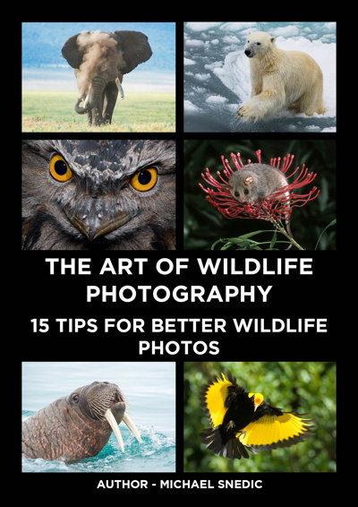 ebook The Art of Wildlife Photography by Michael Snedic