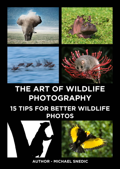 ebook The Art of Wildlife Photography by Michael Snedic 2021