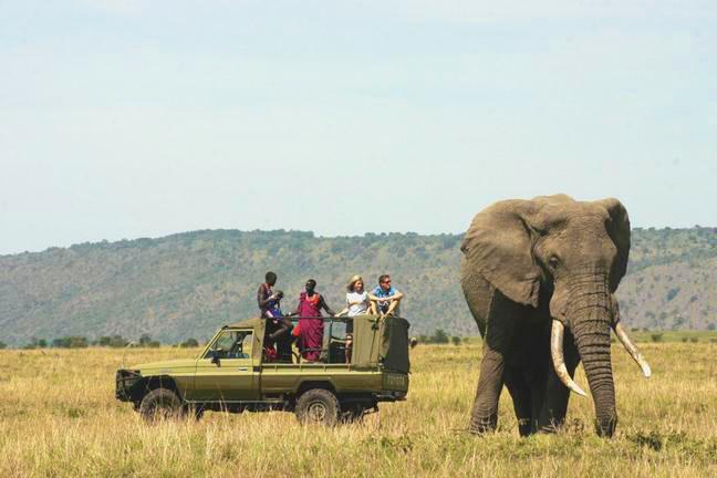 Amazing elephant experience - Kenya, Africa