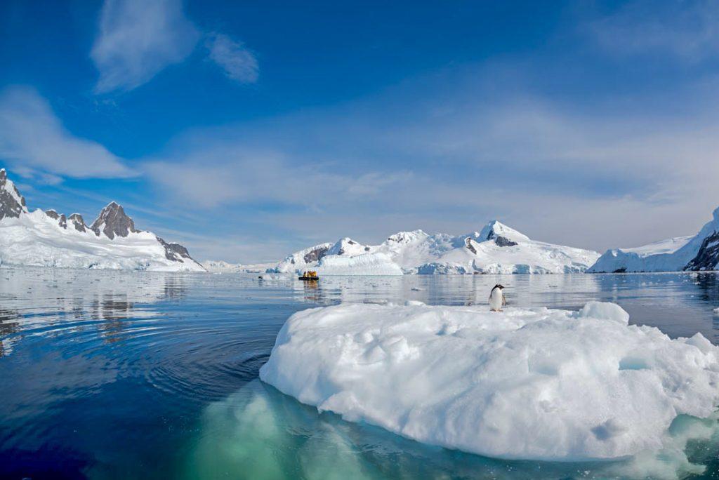 Antarctica cruising