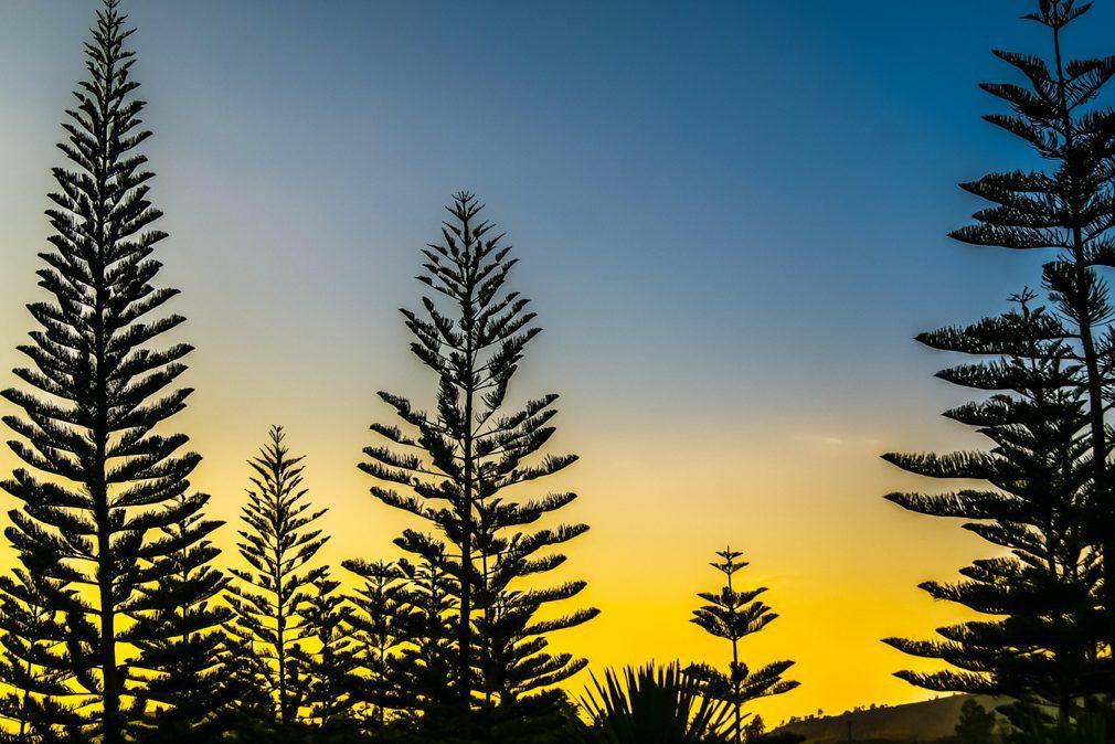 Norfolk Island Photo Workshop_4