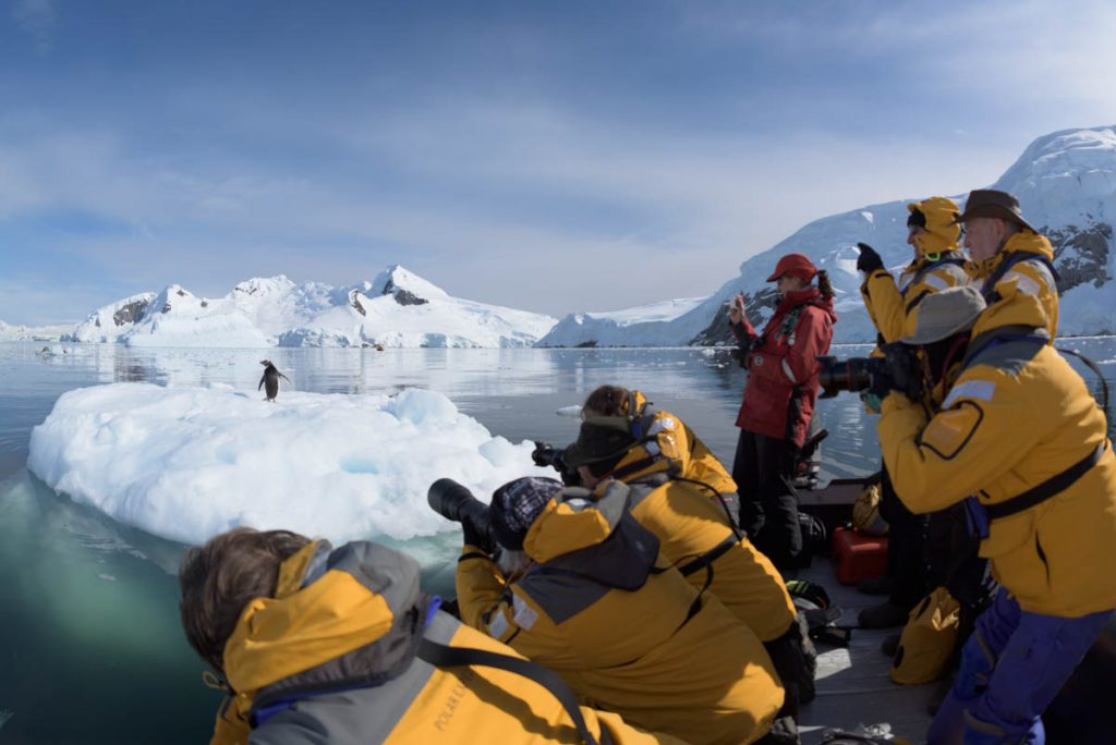 Photographing Penguins in Antarcitca
