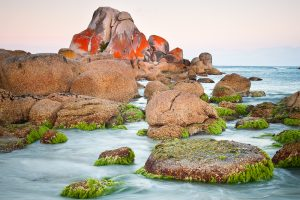 7 Day East Coast of Tasmania Photography Adventure (Freycinet and Bay of Fires)