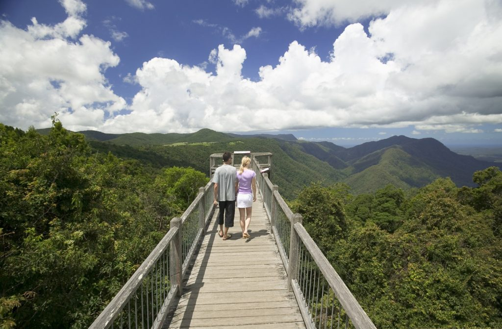 Skywalk, Dorrigo NP
