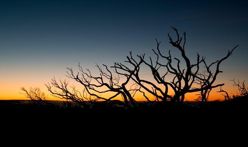 Surise Kangaroo Island
