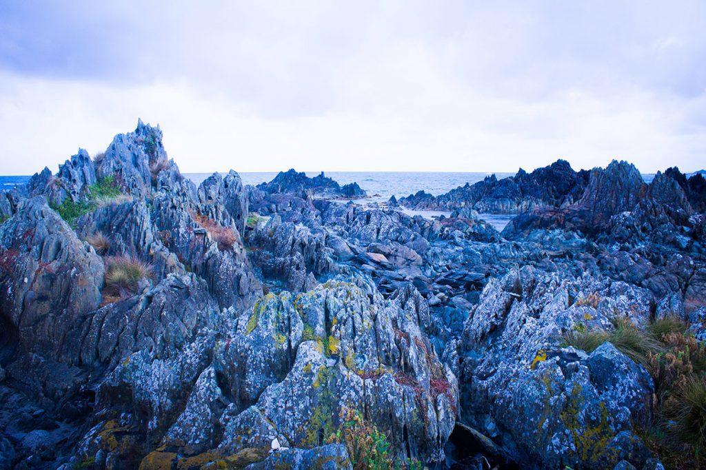 Tarkine landscape