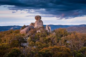 Three Day 'Girraween N.P. Photo Workshop' – Queensland
