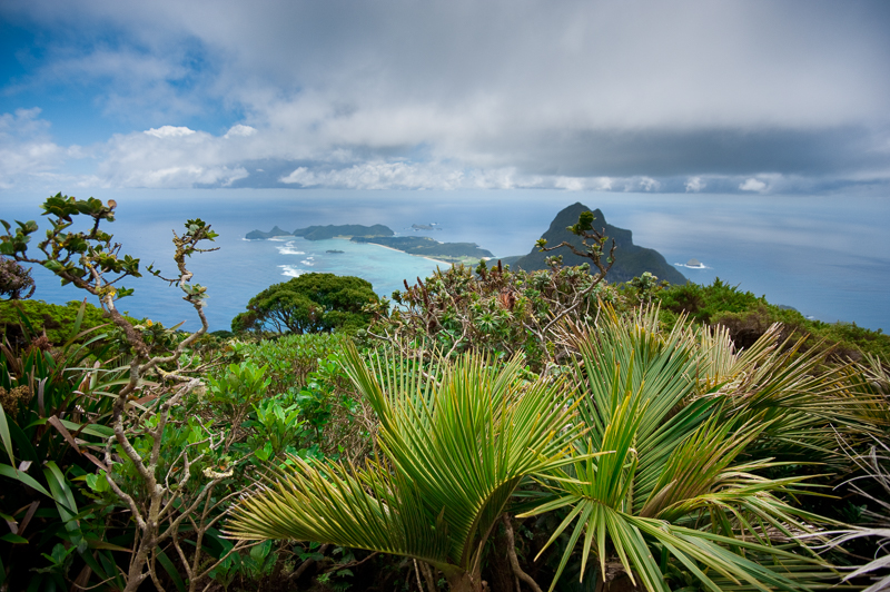 View to Mt Lidgebird - Lord Howe Island