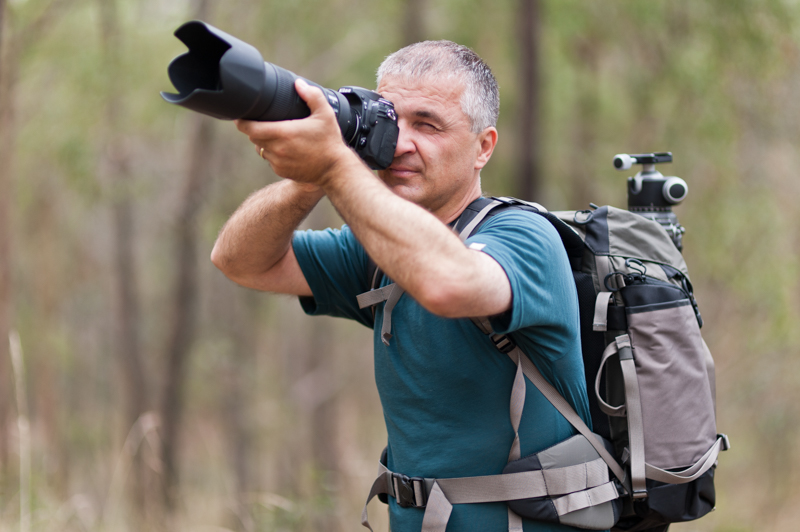 Which Lens Is Best For Wildlife Photography?