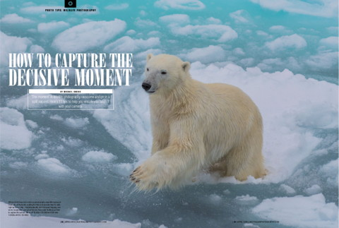 How To Capture The Decisive Moment Australian Photography Magazine April 2019