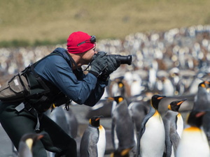 15 Day South Georgia/Antarctica Photo Expedition