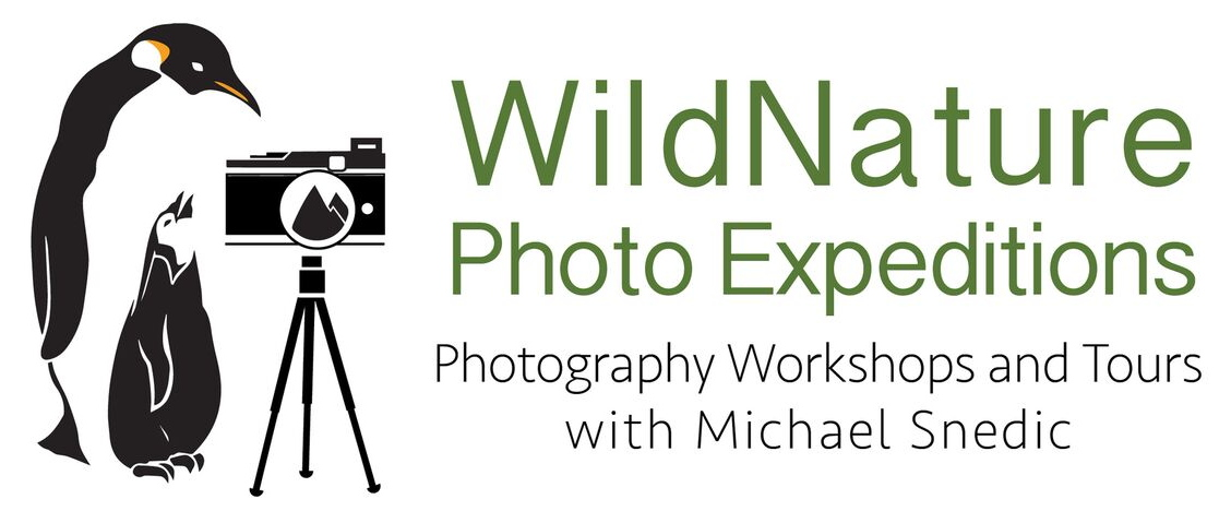 WildNature Photo Expeditions