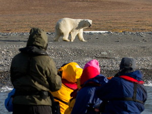 'Across The Top Of The World' - Wrangel Island - 15 Day Photo Expedition